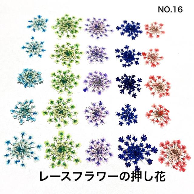 【25枚】レースフラワー の押し花(No.16) ハンドメイドのフラワー/ガーデン(ドライフラワー)の商品写真