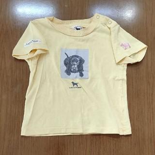 ラブラドールリトリーバー(Labrador Retriever)のLabra Puppy Tシャツ(Tシャツ/カットソー)