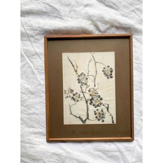 marimekko - つる草の絵 吉田武聖