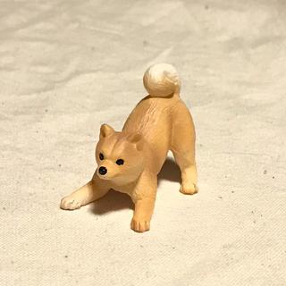 ミニチュアプラネット 柴犬