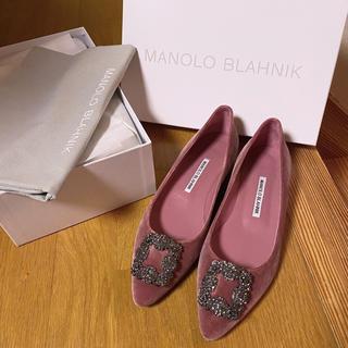 MANOLO BLAHNIK - マノロブラニク    ハンギシ パンプス ハンギシフラット  ピンク ベロア
