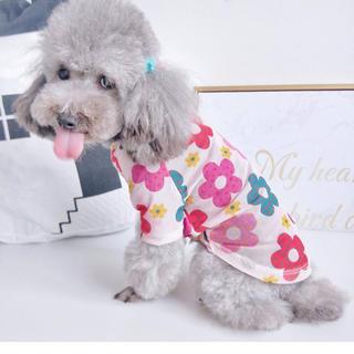 【新品】春夏新作★犬猫服 薄手 花柄シャツ①♫ピンクXL