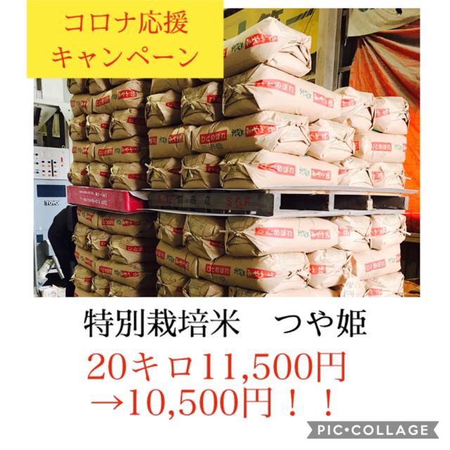 コロナ応援キャンペーン!!光り輝く大粒米✼宮城県産つや姫5キロ 食品/飲料/酒の食品(米/穀物)の商品写真