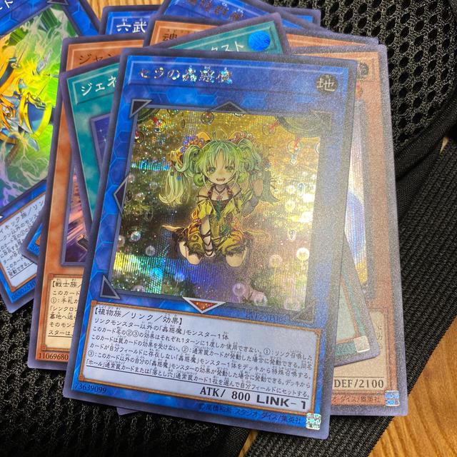 遊戯王(ユウギオウ)のセラの蟲惑魔 シークレット エンタメ/ホビーのトレーディングカード(シングルカード)の商品写真