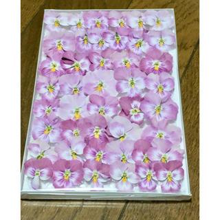 お花屋さんが作った桜ピンクのビオラのドライフラワー  69(ドライフラワー)