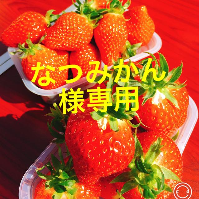 なつみかん様専用 食品/飲料/酒の食品(菓子/デザート)の商品写真