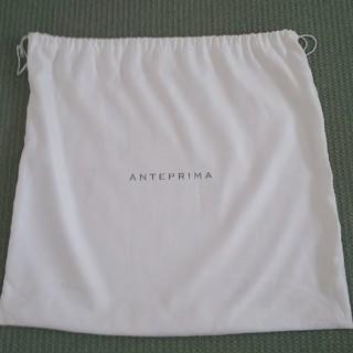 ANTEPRIMA - イントレッチオ確認画像4