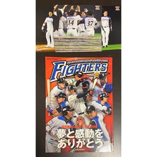 ホッカイドウニホンハムファイターズ(北海道日本ハムファイターズ)の2014年 日本ハムファイターズ 雑誌&ポストカード(記念品/関連グッズ)