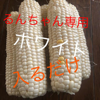 るんちゃん専用ホワイトとうもろこし6月発送予定‼️(野菜)