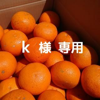 【k  様専用】ページ(フルーツ)