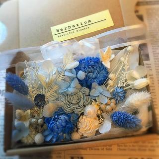 プリザ&ドライフラワー 花材 ブルーボックス(ドライフラワー)
