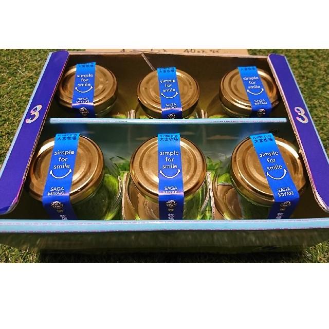 母の日ギフト 牧場プリン3(6個入り) 食品/飲料/酒の食品(菓子/デザート)の商品写真