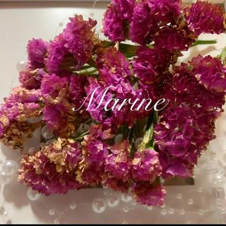 母の日花材 スターチス ピンクゴールド ドライフラワー ハーバリウム花材(ドライフラワー)