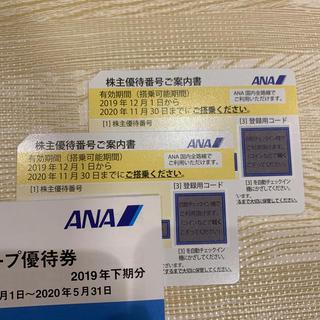 ANA(全日本空輸) - ANA 株主優待券 2枚 2020/11/30まで