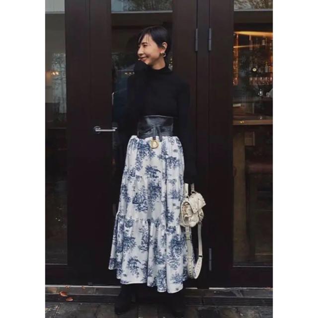 Ameri VINTAGE(アメリヴィンテージ)のAMERI UNDRESSED AVA TULLE DOCKING SKIRT レディースのスカート(ロングスカート)の商品写真