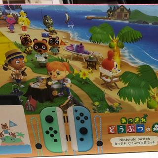 ニンテンドースイッチ(Nintendo Switch)のあつまれどうぶつの森 Nintendo Switch 本体セット 同梱版(家庭用ゲーム機本体)