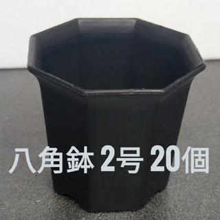 ◎20個◎ ブラック 2号 / 2寸 / 6cm 八角鉢 プラ鉢 (その他)