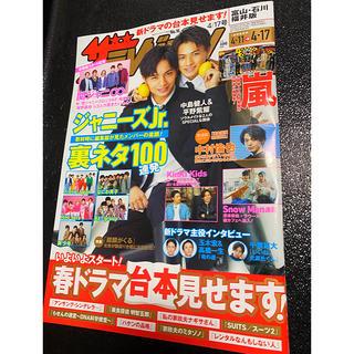 ザテレビジョン4/17号 最新号 1冊
