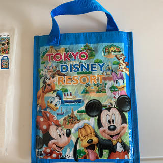 ディズニー(Disney)のディズニーランド レジャーシート(旅行用品)