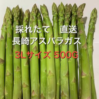 長崎産アスパラガス 3Lサイズ 500G(野菜)