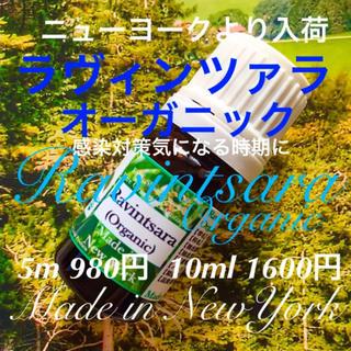 【空間浄化スプレー作りに最適】有機ラヴィンツァラ精油10ml
