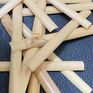 オーボエリード製作練習用 カマボコ型ケーン20枚セット(リゴティ)(オーボエ)