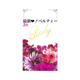 Rady - Lady ❤︎ 最新 ノベ ❤︎ 枚数· · ·1 ❤︎