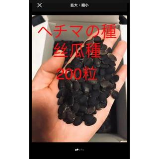 ヘチマの種丝瓜種200粒(野菜)