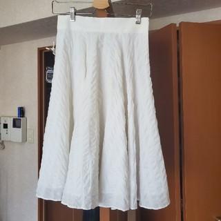 JILLSTUART - フレアスカート
