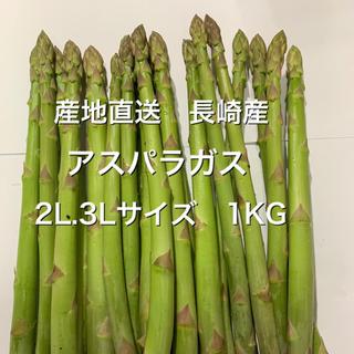 長崎産アスパラガス 2L.500G 3L.500G(野菜)