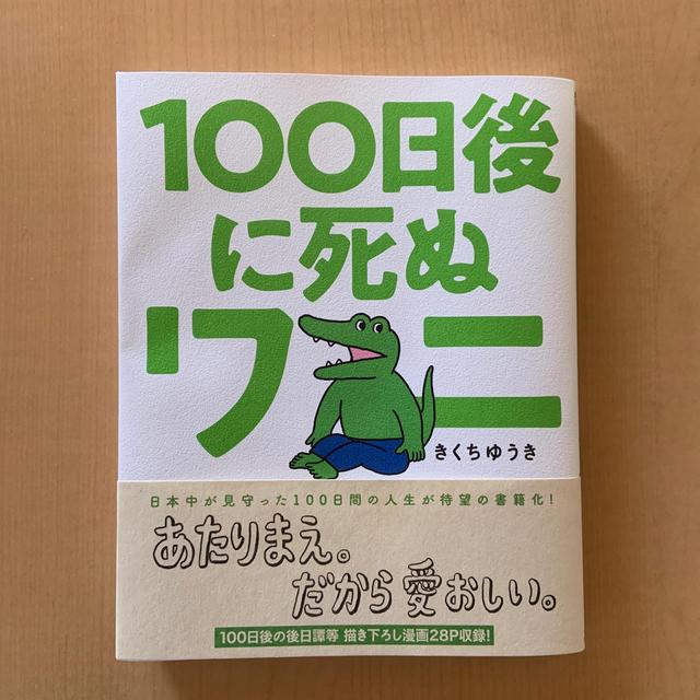 100日後に死ぬワニ エンタメ/ホビーのおもちゃ/ぬいぐるみ(キャラクターグッズ)の商品写真
