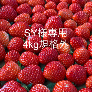 SY様専用●さがほのか規格外4kg●クール便(フルーツ)