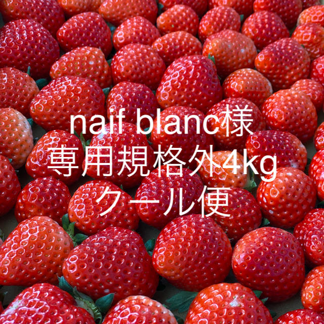 naif blanc様専用●さがほのか規格外4kg●クール便 食品/飲料/酒の食品(フルーツ)の商品写真