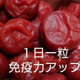 梅干し  紫蘇(十郎梅)  500g(漬物)