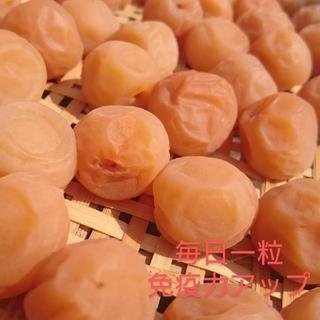 梅干し  白(七折小梅)500g(漬物)