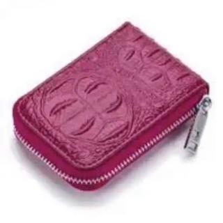 カードケース スキミング防止 レディースクレジットカード 名刺入れ 大容量(名刺入れ/定期入れ)