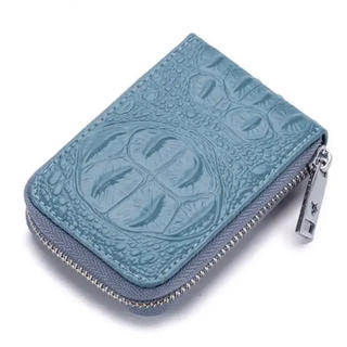 カードケース スキミング防止 メンズ クレジットカード 名刺入れ 大容量(名刺入れ/定期入れ)