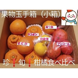 珍果物玉手箱(小箱)♥旬の柑橘味比べ♥雪だるまから直送(フルーツ)