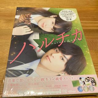 セクシー ゾーン(Sexy Zone)のハルチカ 豪華版 DVD(日本映画)