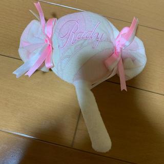 レディー(Rady)のrady   おもちゃ(知育玩具)
