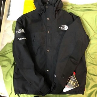 Supreme - 19ss The North Face Mountain Parka M