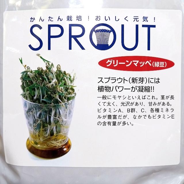 園ちゃん様専用 セレクト種子4袋 食品/飲料/酒の食品(野菜)の商品写真