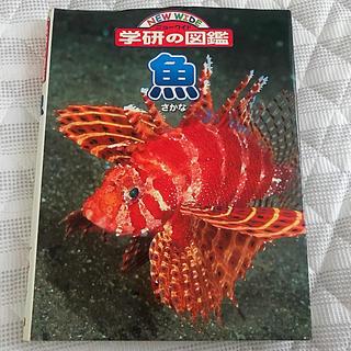 ガッケン(学研)の【本/図鑑】学研の図鑑 魚(さかな)🐟(絵本/児童書)