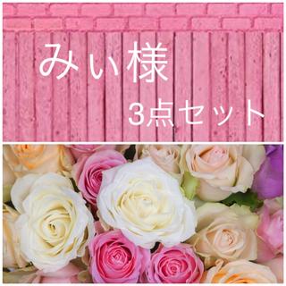 薔薇 苗(その他)