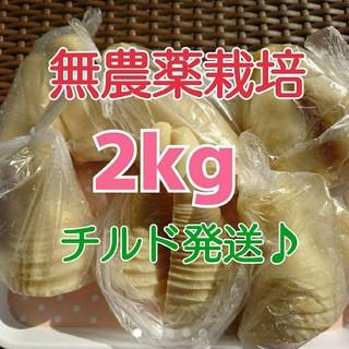 特価【チルド発送♪】 《無農薬栽培》 和歌山県産 孟宗たけの子 水煮 2kg(野菜)