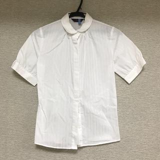 スーツカンパニー(THE SUIT COMPANY)のクリーニング済 brick house 半袖 ワイシャツ(シャツ/ブラウス(半袖/袖なし))