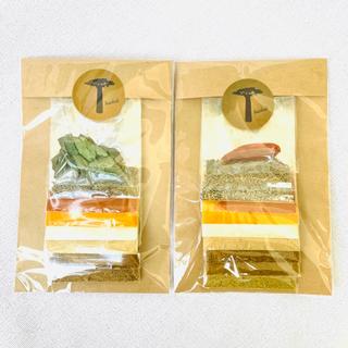4袋 カレースパイスセット まとめ買い レシピ付 グルテンフリー スパイスカレー(調味料)