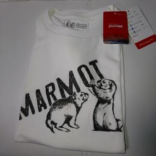マーモット(MARMOT)のMarmot 半袖 Tシャツ(Tシャツ/カットソー(半袖/袖なし))