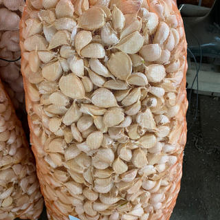 青森県産 バラ福地ホワイトにんにく1.5キロ送料(野菜)
