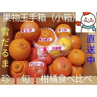 柑食❗果物玉手箱(小箱)♥旬の柑橘味比べ♥雪だるまから直送(フルーツ)